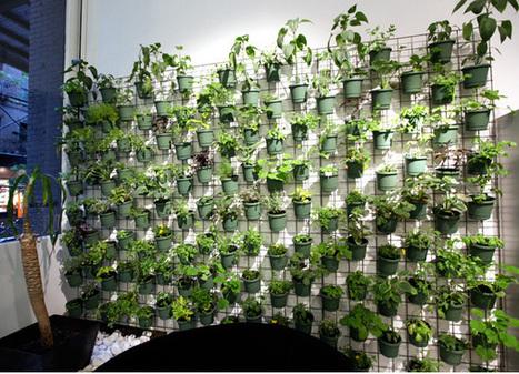 Garden vertical garden 5 cheap and easy garde for Balcony vertical garden ideas