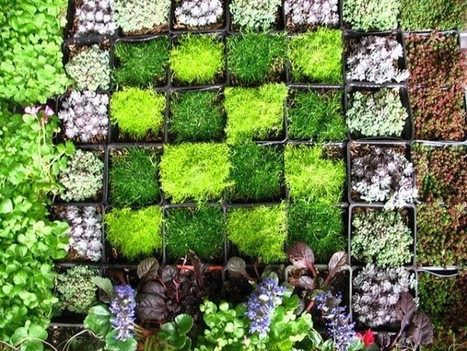 DIY Gardening: How to create a Vertical Wall Garden - Greener Ideal | Wellington Aquaponics | Scoop.it