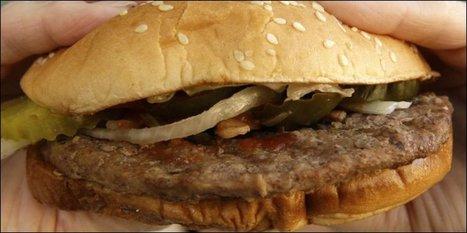 Un Suisse tué à Munich pour un burger   Mais n'importe quoi !   Scoop.it
