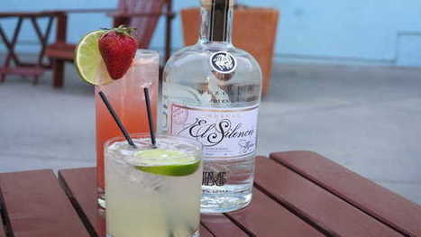 Add the Best Mezcal Drinks to Your Party Celebration   Mazcal Taquila   Scoop.it