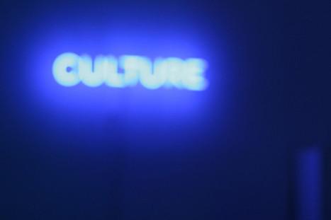 Quand il s'agit de culture, les Français pensent (presque) tout de suite au livre | Veille professionnelle des Bibliothèques-Médiathèques de Metz | Scoop.it