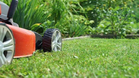 How Often Should You Mow a Growing Lawn? | Landscape | Scoop.it
