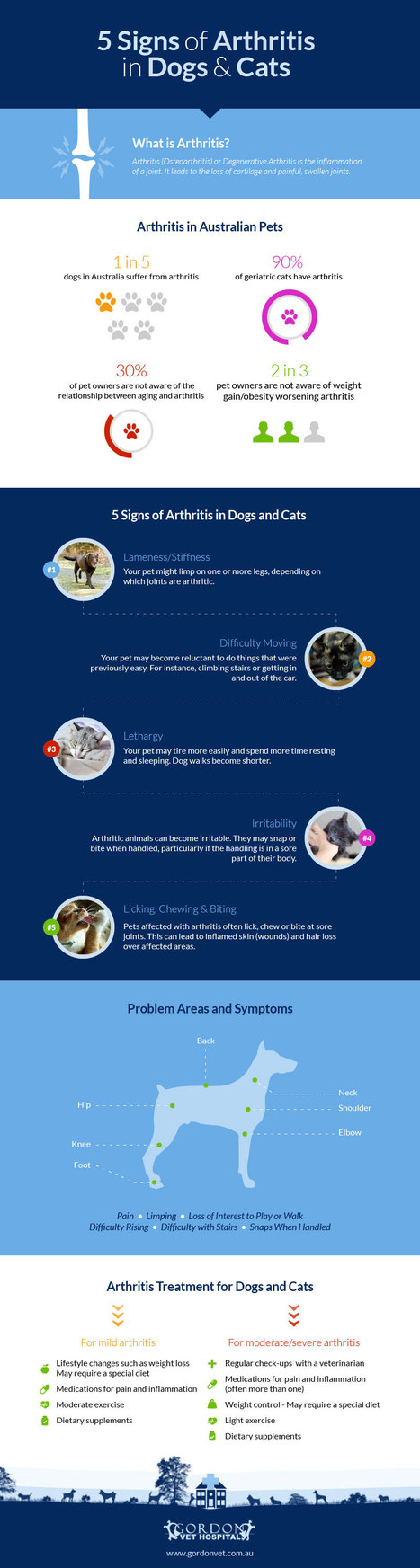 5 Signs of Arthritis in Dogs and Cats – Infographic | Visual.ly | Infographics for better understanding | Scoop.it