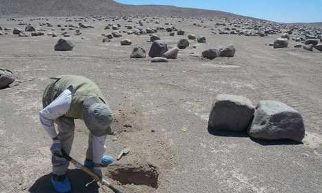 Driest place on Earth hosts life | Astrobiology | Scoop.it