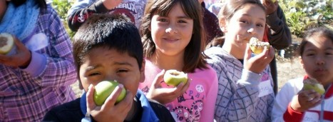 California Farm to School Network | Linking farmers, schools, distributors, youth, and allies across California! | Food issues | Scoop.it