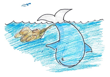 The Power Of Poop: A Whale Story!! | GO Sustainable GO Versatile | Scoop.it