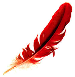 Writing compelling copy with a stick and red feathers | Communication excellence | Scoop.it