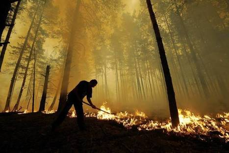 Russian wildfires put key climate change resource at risk | The Japan Times | Sustain Our Earth | Scoop.it