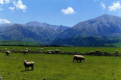 Exploring New Zealand's Beauty | Travel Destinations | Scoop.it