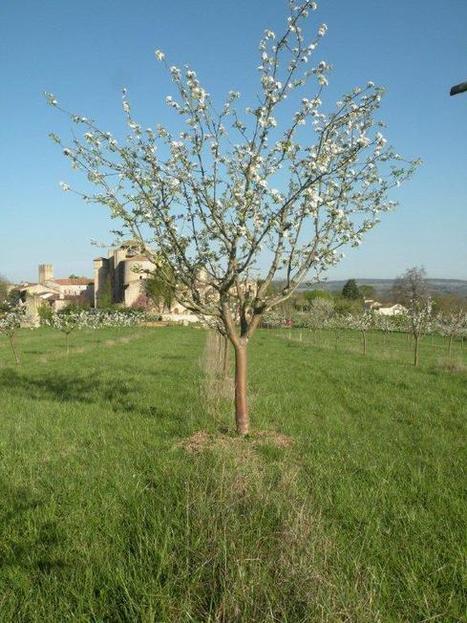 : Gascogna Terra démontre l'excellence ...   Terroir   Scoop.it