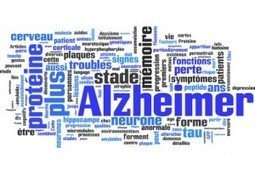 Etre bilingue retarderait la survenue d'Alzheimer | Les maisons de retraite Alzheimer | Orthophonie | Scoop.it