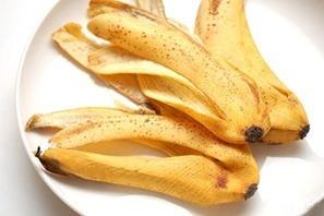 Great Uses Of Banana Peel | Banana Peel |  Amazing Uses for Banana Peels |  Great Uses Of Fruit Peel |  Important Facts Banana Peel | Health Care | Scoop.it