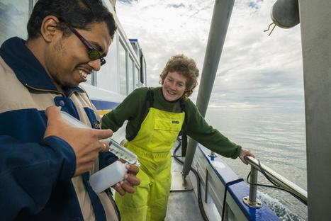 Investigating ocean acidification | NIWA | Changing Chemistry - The People Impacted by Ocean Acidification | Scoop.it