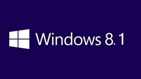 Windows 8.1 : Les chercheurs de Google publient une faille 0-Day | Libertés Numériques | Scoop.it