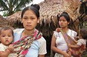 Pétition - Huile de palme : la pauvreté imposée aux autochtones - Sauvons la Forêt | remarques | Scoop.it
