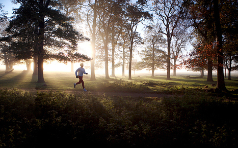 Running gives your brain a work out, say scientists | Fitness | Scoop.it