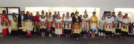 A Reflection: SPACLALS and Tonga Day for CMDHB | Art of the Pacific | Scoop.it