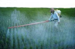 EFSA - Scientific Report of EFSA: 2010 EU Report on Pesticide Residues | Agricultural Research | Scoop.it