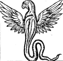 Nace ceaunine, blog del Centro de Estudios Áureos de la Université de Neuchâtel   Literatura Española de los Siglos de Oro   Scoop.it