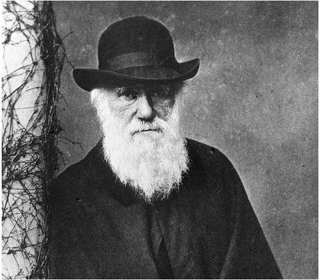 Científicos resuelven el misterio de los extraños mamíferos de Darwin - EFE Futuro América | EDUCACION AMBIENTAL | Scoop.it