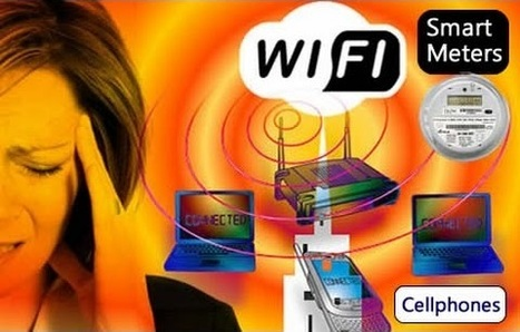 Neurosurgeon: Radiation from Wi-Fi, Smart Meters and Cell Phones Cause the Blood-Brain Barrier to Leak | Health Supreme | Scoop.it