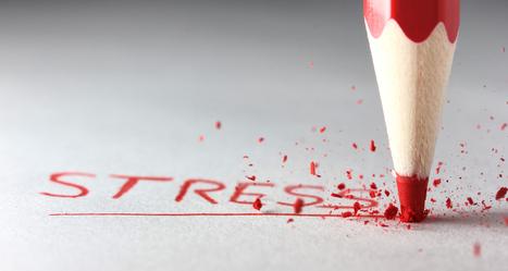 Un nouveau management contre le stress et la démotivation. | Management et Leadership | Scoop.it