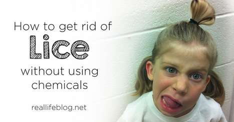 Get Rid of Head Lice Without Chemicals | Making Your Own Home Remedies | Scoop.it