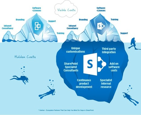 The hidden costs of SharePoint | Interact Intranet Software | SharePoint Nice to Know | Scoop.it