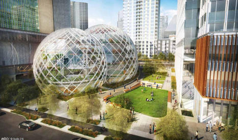 Amazon proposes a colossal biospherelike Seattle campus | Garden Grunt | Scoop.it