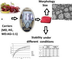 Microencapsulated beetroot juice as a potential source of betalain | plant cell genetics | Scoop.it