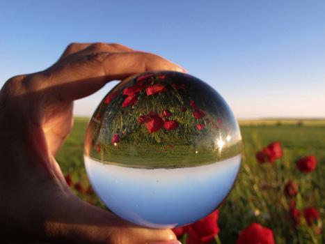 Webjournalisme : quelles tendances pour 2013? | Cabinet de curiosités numériques | Scoop.it