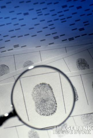 Why Do We Have Fingerprints? I Greg Foot I Head ... | Semlex Group | Scoop.it