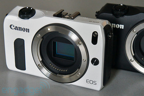 How to Enhance the Popularity of Mirror-Less Camera System? | Digital Camera World | Scoop.it