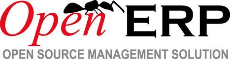 OpenERP se lance dans la gestion de contenu et l'eCommerce | Infogerance | Scoop.it