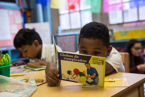 Dual-Language Programs Are on the Rise, Even for Native English Speakers   ¡CHISPA!  Dual Language Education   Scoop.it