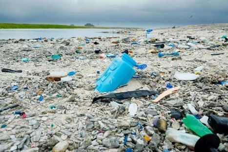 Plastic: the wonder material filling our oceans and beaches | Sustain Our Earth | Scoop.it