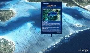 Sumerge el aula en el Índico con 'Google Ocean' | Geografía del mundo | Scoop.it