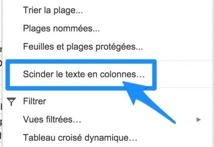 Google Sheets :  scinder le texte en colonnes. | TIC et TICE mais... en français | Scoop.it