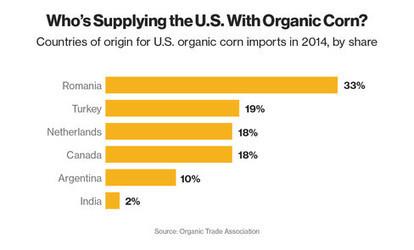 U.S. Forced to Import Corn as Shoppers Demand Organic Food | Grain du Coteau : News ( corn maize ethanol DDG soybean soymeal wheat livestock beef pigs canadian dollar) | Scoop.it