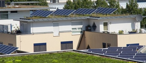 Green (Living) Roof and Solar Panel Combo Yield Better Performance | Sustainable Urban Agriculture | Scoop.it