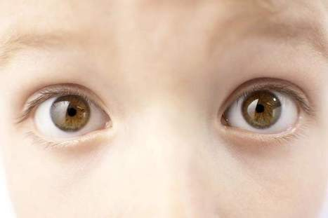 Parents should focus on five eye-health tips - Florida Today | How To Get Healthy | Scoop.it