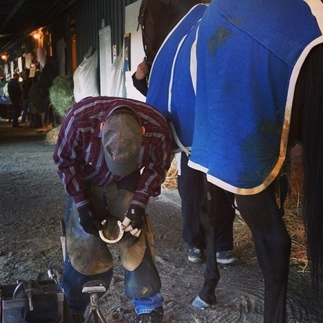 Paynter's New Shoes: Instagram photo by Santa Anita Park • Jan 5, 2013 at 4:53pm UTC | Laminitis News | Scoop.it