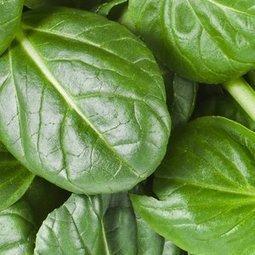 Top 8 des meilleurs aliments contre les problèmes d'érection | Sexualité | Scoop.it