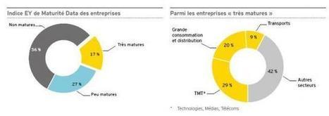 La grande distribution bien dotée en data scientists | Déclencher l'achat - Shopper marketing | Scoop.it