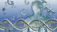 El ADN hace memoria | #inLearning + HCI | Scoop.it