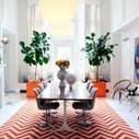 El Happy Chic: decoración colorista para hacerte feliz   Odio el minimalismo decorativo y vital   Scoop.it