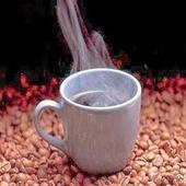 Cung cấp cà phê sạch ở TP.HCM: Cà phê làm giảm khả năng hấp thụ Canxi ?   caphesachotphcm   Scoop.it