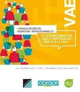 Lancement du dispositif VAE pour les Conseillers en insertion professionnelle | Actualités Emploi et Formation - Trouvez votre formation sur www.nextformation.com | Scoop.it