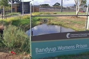 """Staggering"" levels of Hepatitis C in Bandyup (WA) 