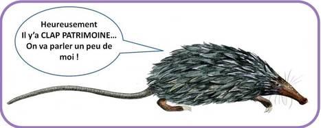 Clap-Patrimoine | Crédit Agricole | Scoop.it